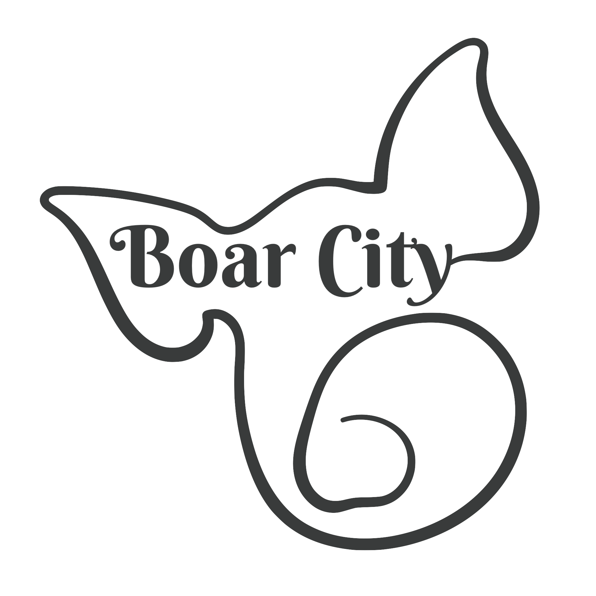 Boar City BBQ-Home of Vonnie B's